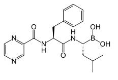 Bortexomib