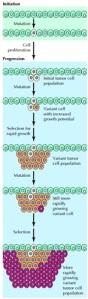 Cancer steps 2